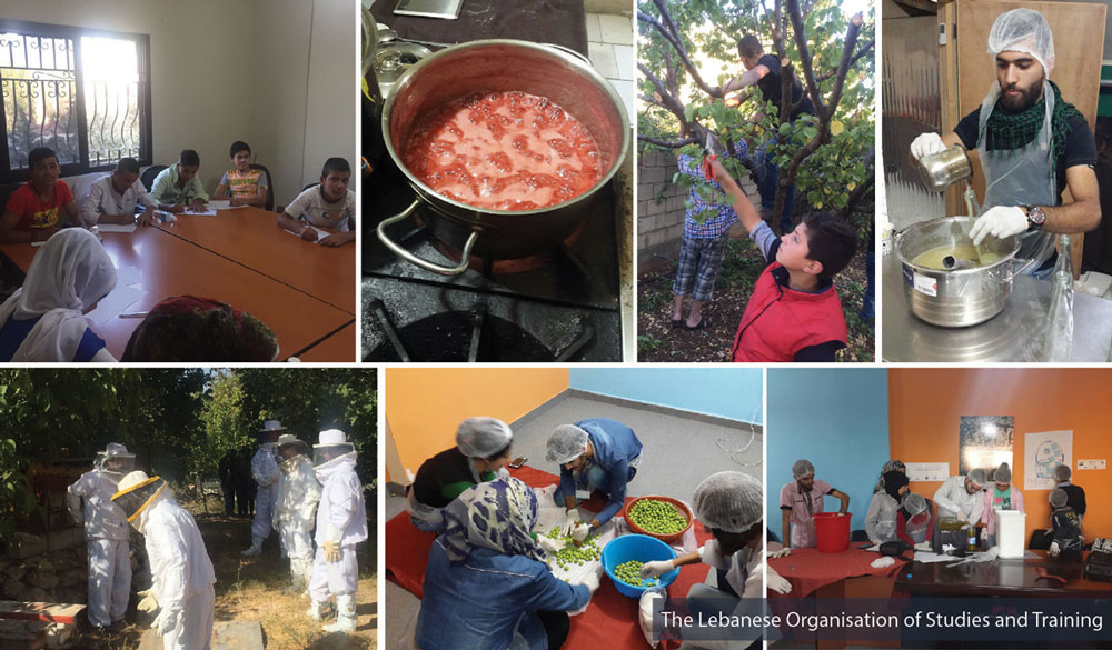 A Trilateral Cooperation to Refine the Agricultural Skills of Youth